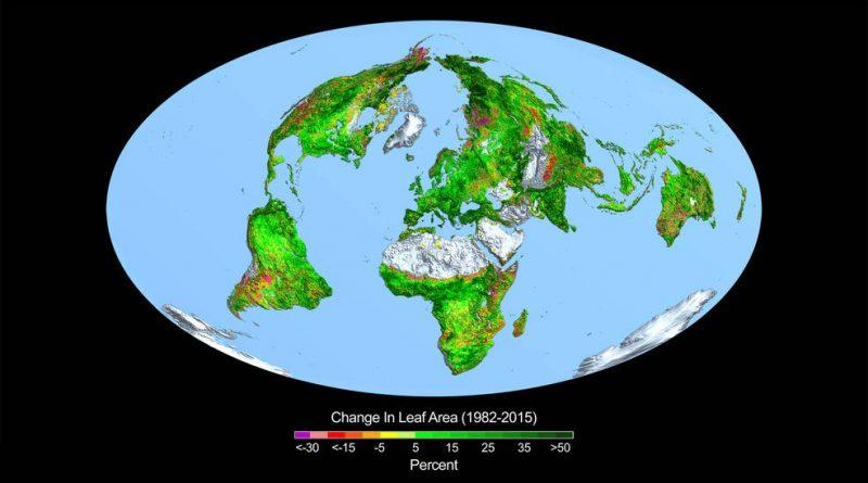Jordens vegetasjon øker