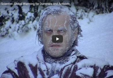 Global Warming for dummies og politikerne